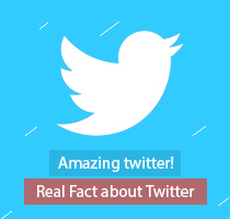 Amazing twitter! (Real Fact about Twitter)