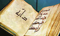 The-word-dabbe-in-Quran