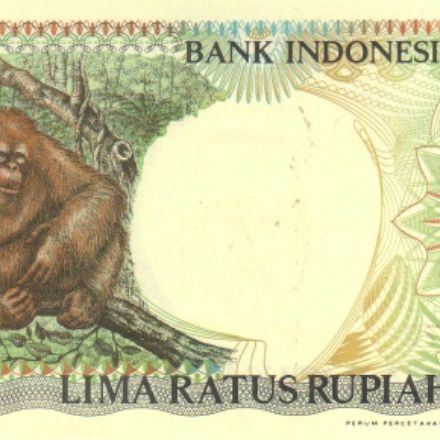 the banknote of Indonesia